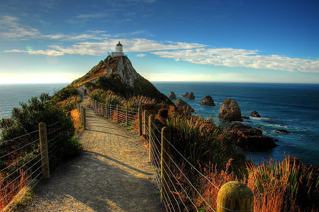 catlins nugget point nz