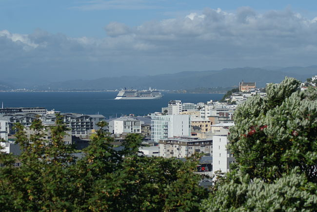 wellington-homestay-accommodation