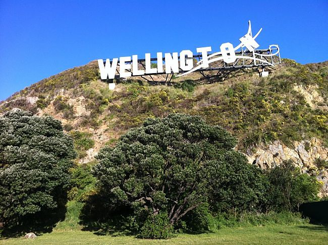 wellington hop on hop off day tours