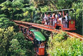 Coromandel day trips - Driving Creek Railway