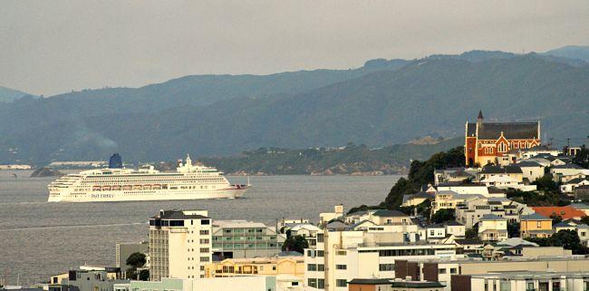 wellington cruise ship day tour