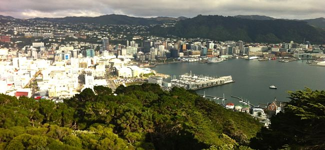 5 best things to do in wellington