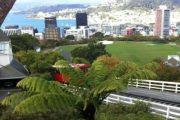Best Wellington Attractions