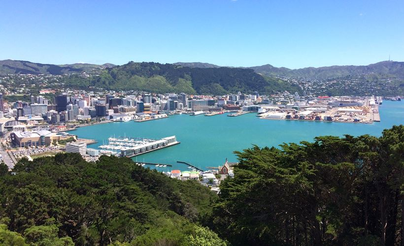 Enjoy this magnificent view of Wellington from mount Victoria lookout